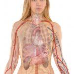 Bolest žaludku a jak jí předcházet