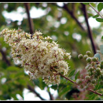S přírodou ke kráse a zdraví! (1. část)