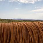 Jak pečovat o vlasy v sychravém počasí